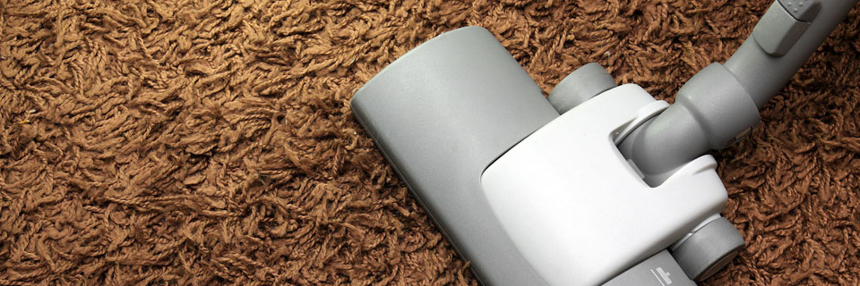 parkettreiniger laminatreiniger teppichreiniger olten solothurn aargau mittelland. Black Bedroom Furniture Sets. Home Design Ideas